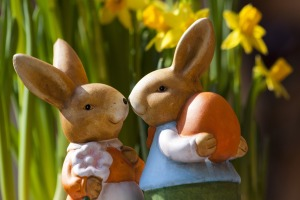 easter-bunny-easter-rabbit-bunny-couple-69816
